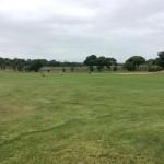 Trophee-Orpi-Golf-LA-rOCHELLE-2016-46